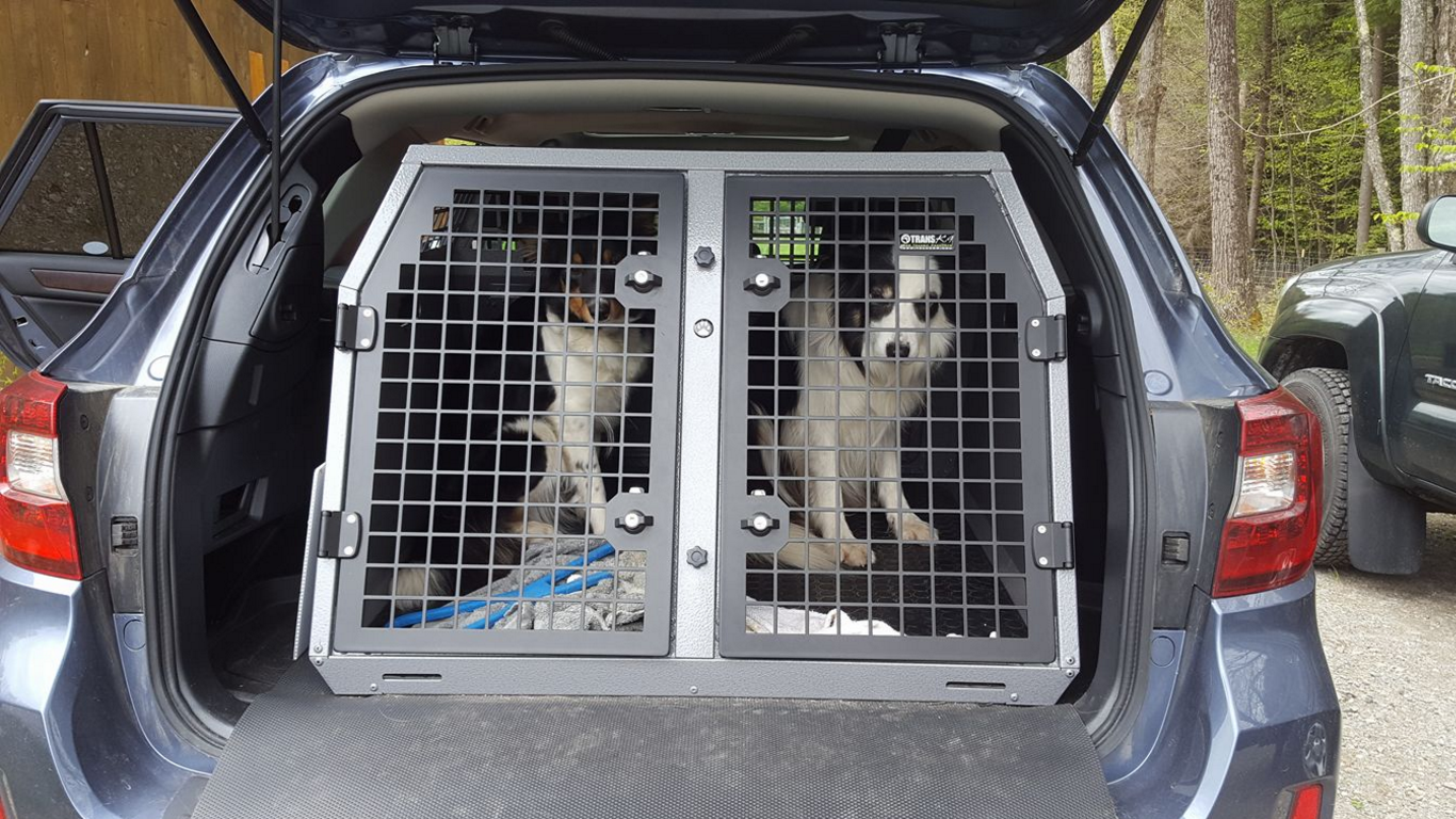 breton and jura demonstrating their transk9 crates liz shaw of magical mutt in nh uses these lockable crates to prevent dog theft
