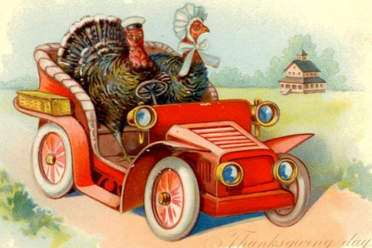 Cartoon of turkeys driving a car